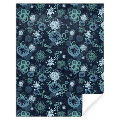 Midnight Miracle patterned Gift Wrap