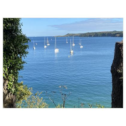 Summer on the Helford Canvas