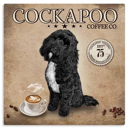 BLACK tuxedo COCKAPOO COFFEE METAL PRINT