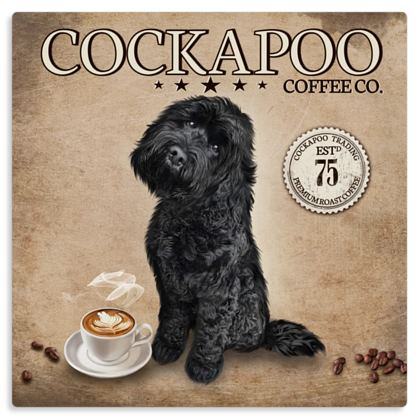 BLACK COCKAPOO COFFEE METAL PRINT