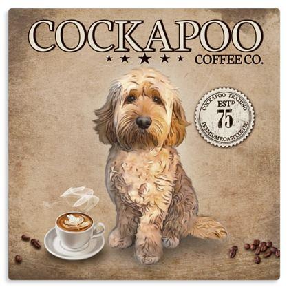 APRICOT COCKAPOO COFFEE METAL PRINT