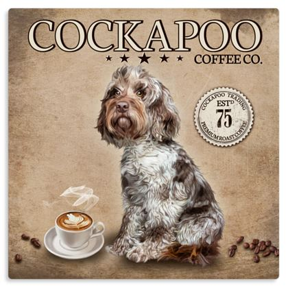 CHOCOLATE MERLE COCKAPOO COFFEE METAL PRINT