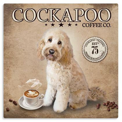 CREAM COCKAPOO COFFEE METAL PRINT