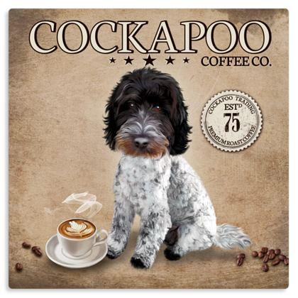 BLUE ROAN COCKAPOO COFFEE METAL PRINT