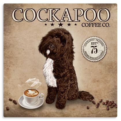 CHOCOLATE TUXEDO COCKAPOO COFFEE METAL PRINT