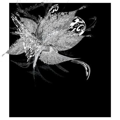 Skater Dress - Skater klänning - White Lace Black
