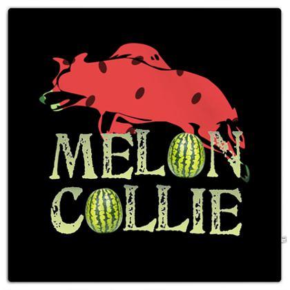 Picnic Blanket - Melon Collie Skateboard Trick