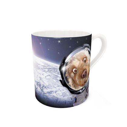 DOODLES SPACE MISSION