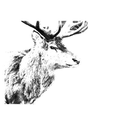 Stag Fabric Placemats