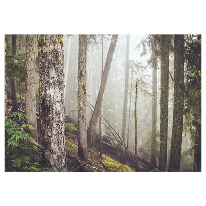 Mystischer Wald auf Stoff