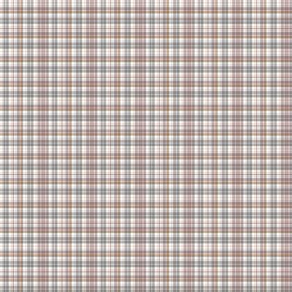 Fabric Printing Plaid Pattern 15