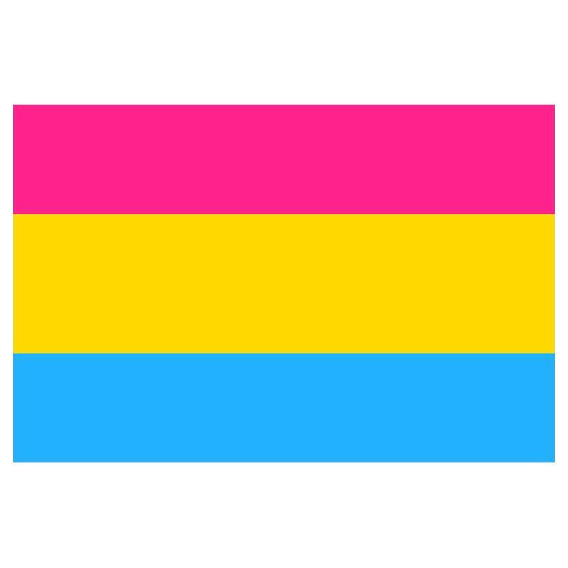 Pansexual pride flag buy