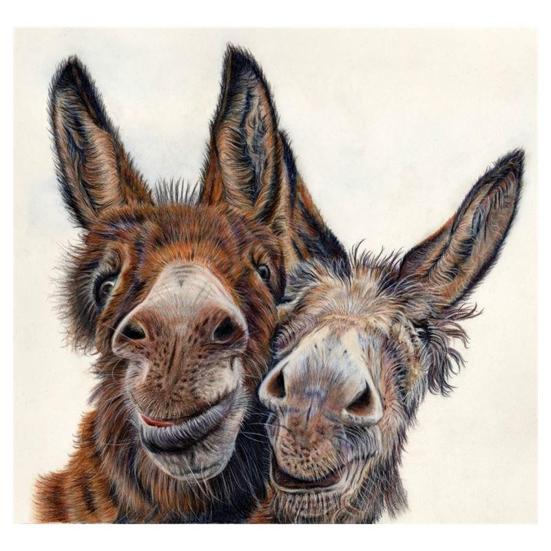 Hee Haw Donkey Coasters