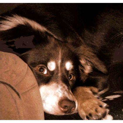 Shoulder Bag - Watching You
