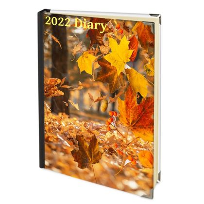 2022 Deluxe Diary - Autumn Falls