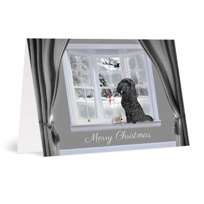 Black dog with white chin christmas card