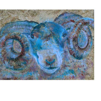 Blue Ram Folding Stool Chair