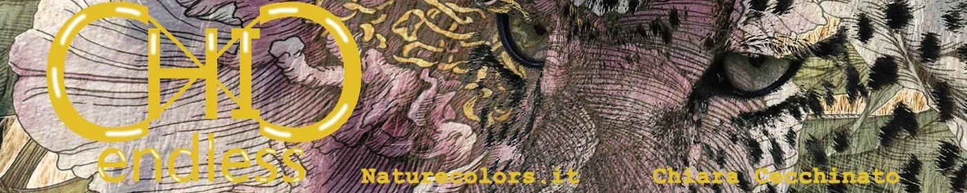 endlessChiC by Naturecolors