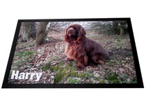 Napfunterlage selber gestalten Hund Harry