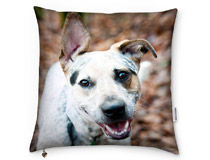 Personalized Cushion for Him