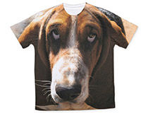 Print on T-Shirt