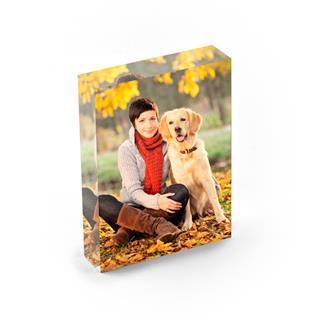 Foto auf Acryl Hund Erinnerungsstück