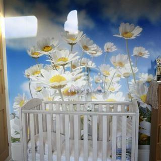 fototapete mit eigenem foto fototapete selbst gestalten. Black Bedroom Furniture Sets. Home Design Ideas