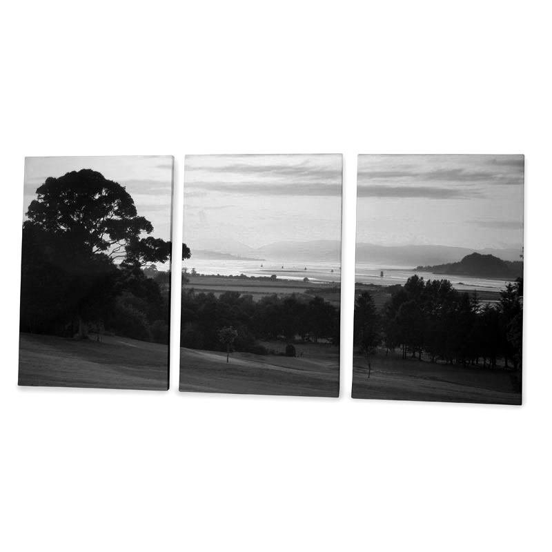 Black and white canvas art prints Black and white canvas art