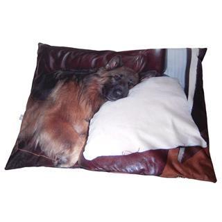 Sitzkissen bedrucken Foto Hund