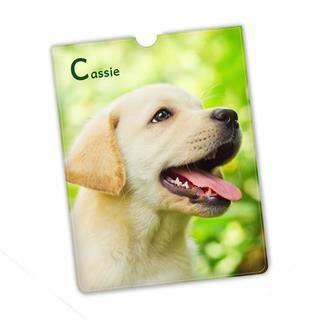 iPad Mini custom cover with dog photo