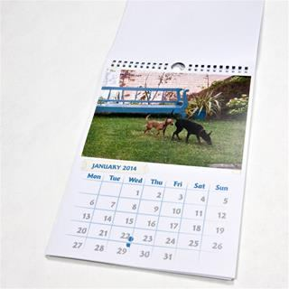 stampa calendari mini online