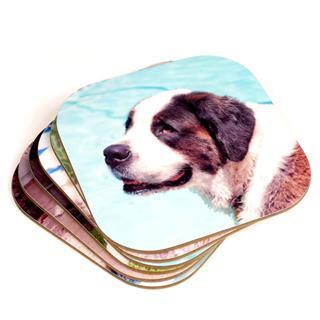 Photo coasters dog print