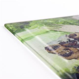 tagliere in vetro con stampa