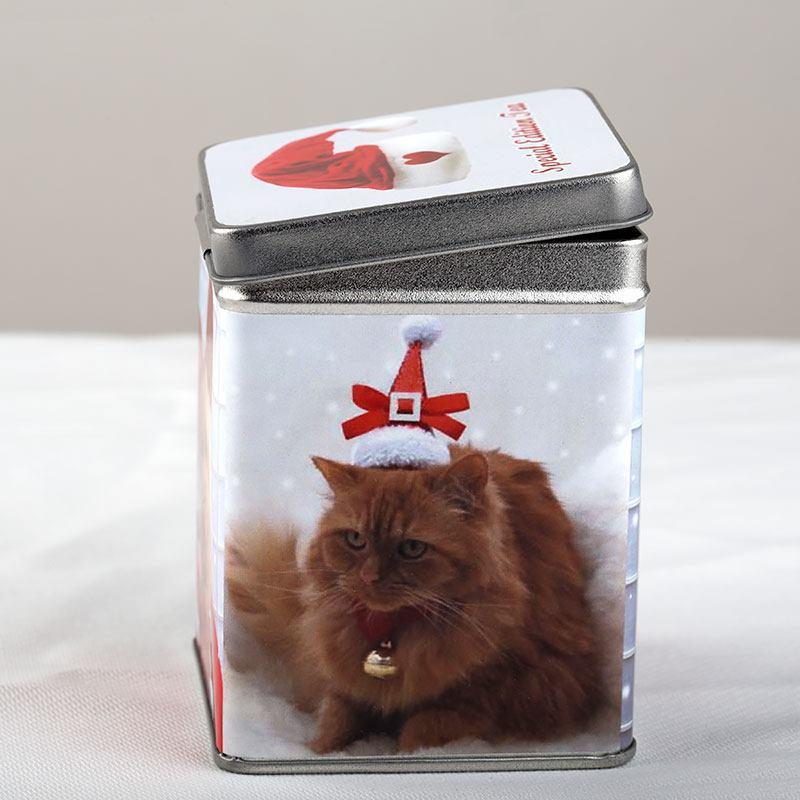 barattoli di latta personalizzati gatti