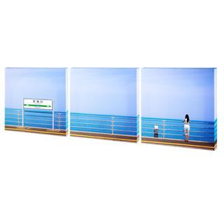 panoramic landscape multi panel canvas