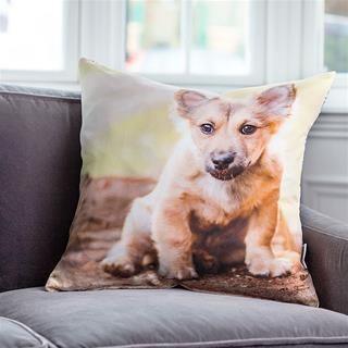 Luxury Cushions personalised dog photo