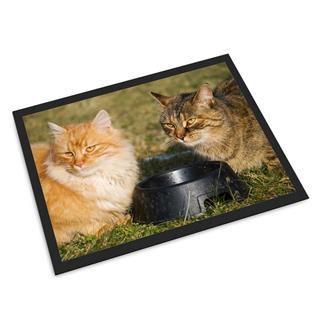 zerbini personalizzabili gatti