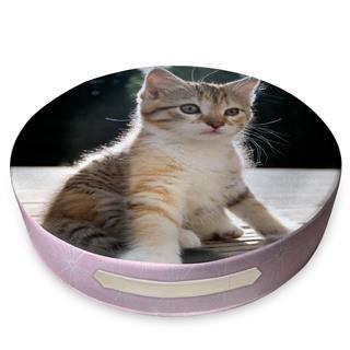 big round floor cushion printed with a cute kitten