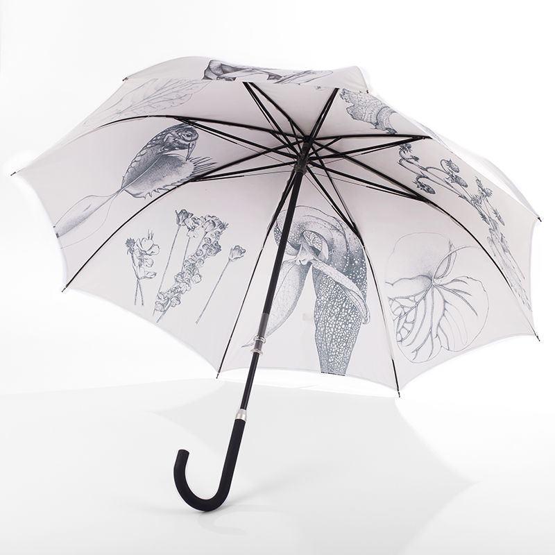 der untere Teil des Griffes wird gedreht und der Schirm öffnet sich