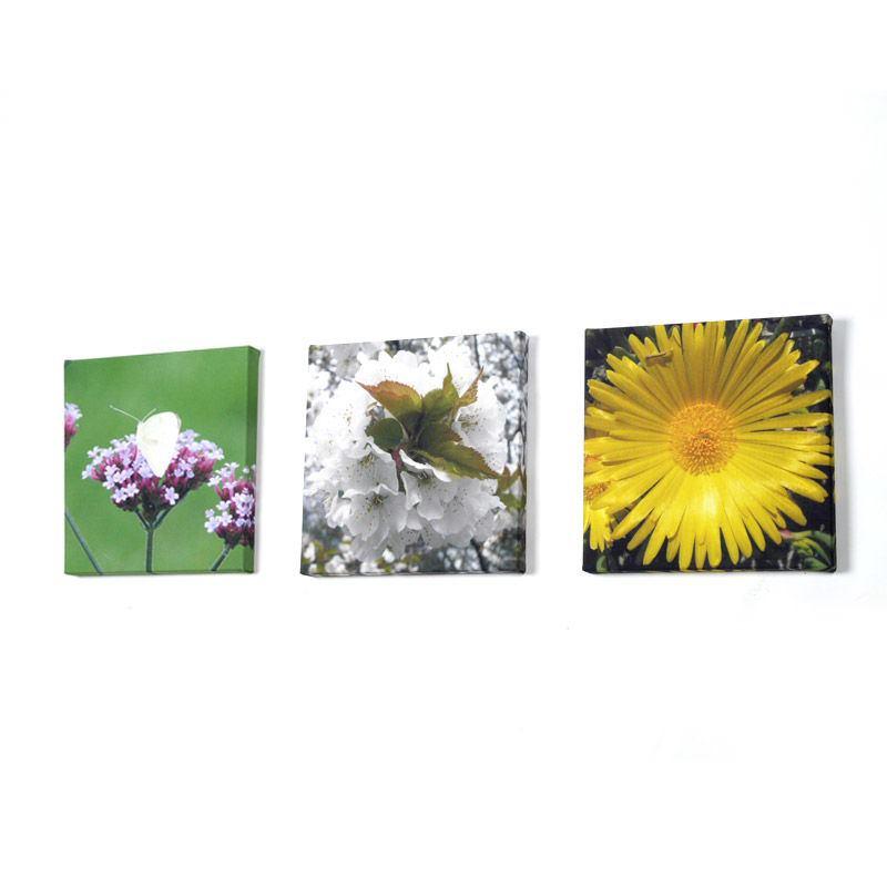 Small Canvas Prints Design Your Own Mini Canvas Art