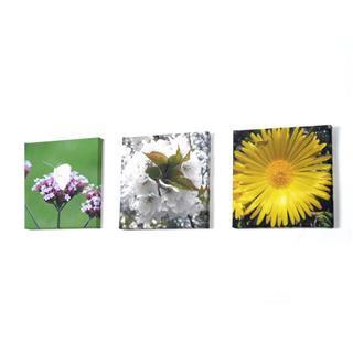 mini photo toile fleur