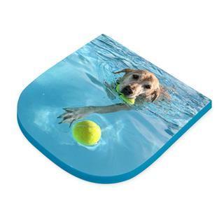 cuscino piatto personalizzato con foto cane