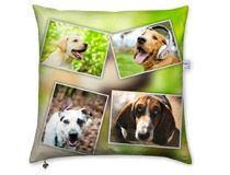 Cushion Montage