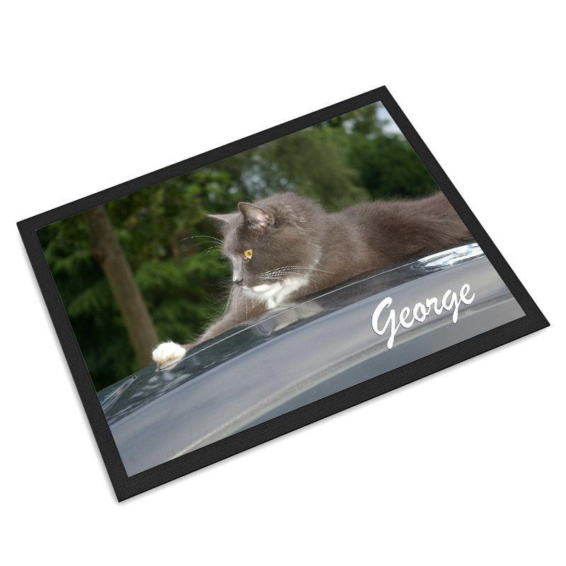 Tapis pour animal domestique tapis pour chien et chat - Chat ou chien ...