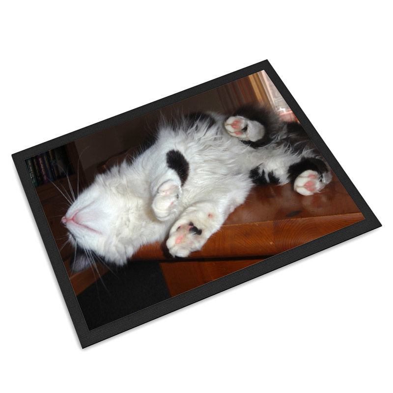 Pet Mats Personalised With Photos And Text On Mat For Cats
