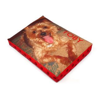 cucce cani personalizzate