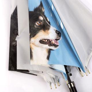 custom umbrella pet details