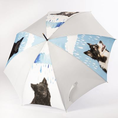 Customised Umbrella