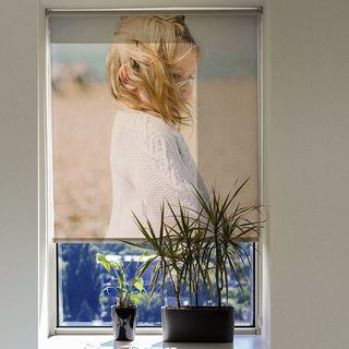Custom Made Roller Blinds Transparent fabric
