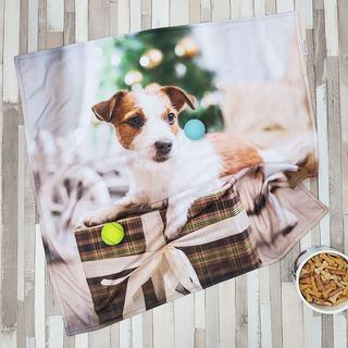 cute personalised dog blanket
